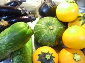 地元、加古川の野菜