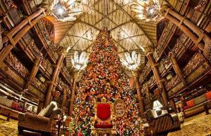 クリスマスメニュー期間のご予約について