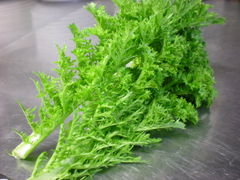 加古川の野菜です。ザーサイとわさび菜