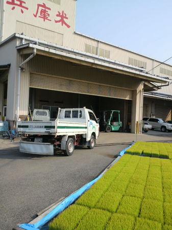 ステーキ・洋食のTANTO屋は、地元加古川のお米を使用しています。