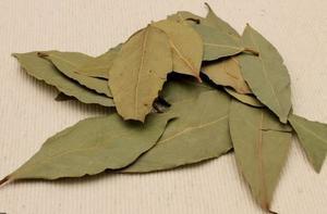 ローリエ(月桂樹の木の葉)について