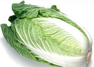 白菜について