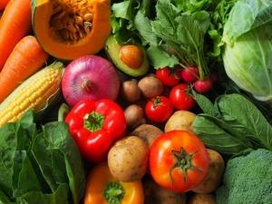 野菜を作るという目標