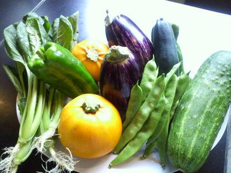 新鮮な地元野菜、続々登場!!