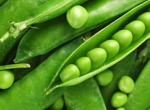えんどう豆について