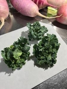 プチヴェールと白菜の菜花は、面白い野菜です。